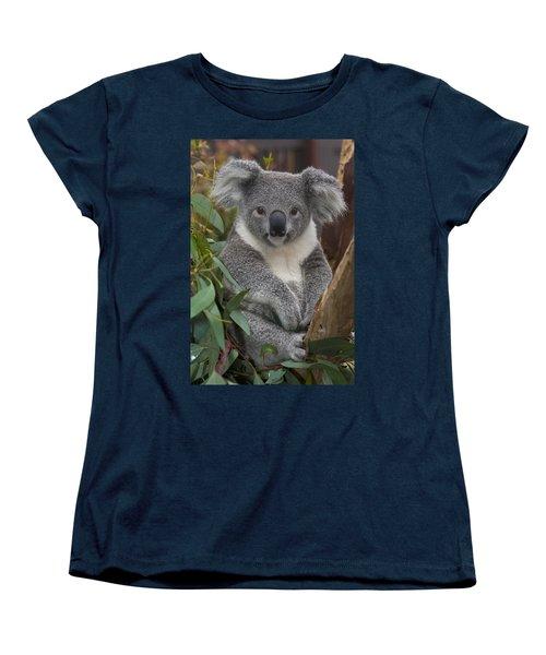 Koala Phascolarctos Cinereus Women's T-Shirt (Standard Cut) by Zssd