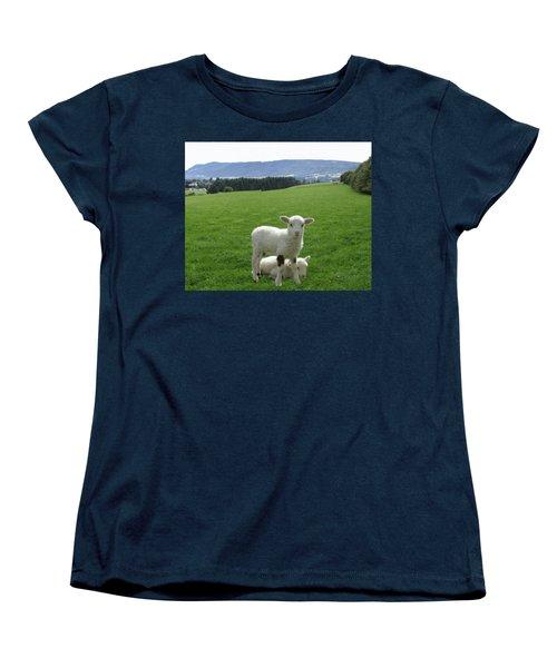 Lambs In Pasture Women's T-Shirt (Standard Cut) by Dominic Yannarella