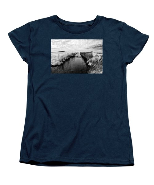 Late Spring Women's T-Shirt (Standard Cut) by Kevin Cable