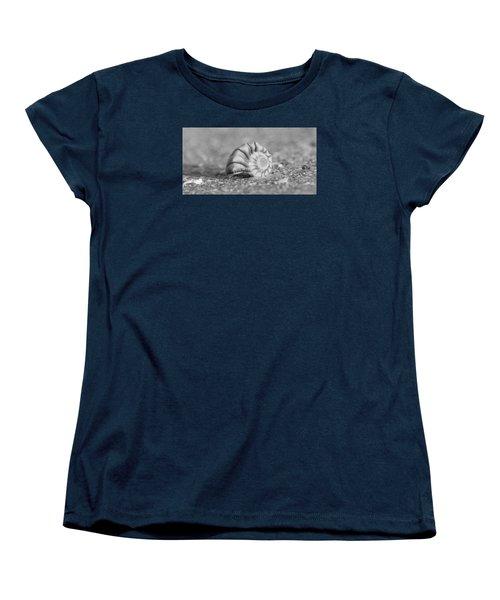 Lightning Whelk Women's T-Shirt (Standard Cut) by Sean Allen
