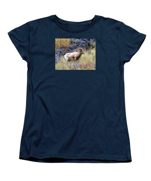 Long Horns Sheep Women's T-Shirt (Standard Cut) by Irina Hays