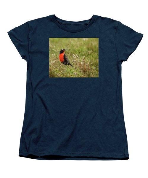 Long-tailed Meadowlark Women's T-Shirt (Standard Cut) by Bruce J Robinson