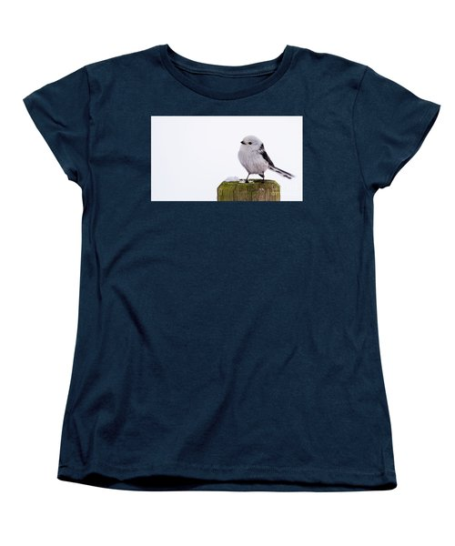 Women's T-Shirt (Standard Cut) featuring the photograph Long-tailed Tit On The Pole by Torbjorn Swenelius