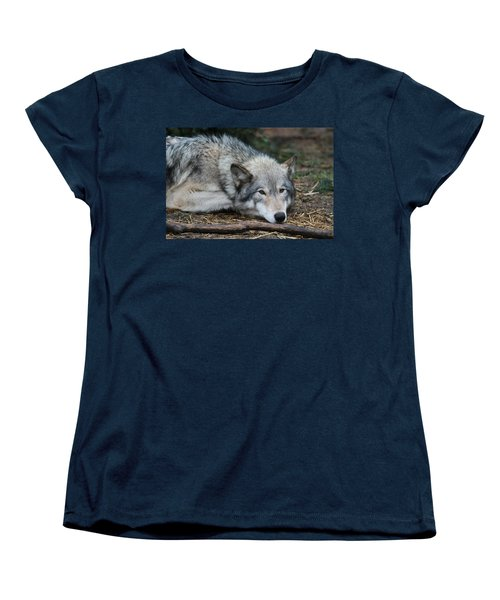 Women's T-Shirt (Standard Cut) featuring the photograph Lying In Wait by Laddie Halupa