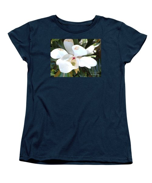 Magnolia Tree Bloom Women's T-Shirt (Standard Cut) by Debra Crank