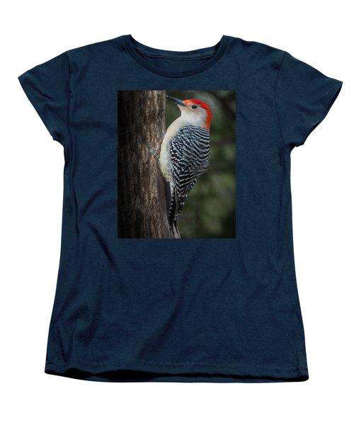 Male Red-bellied Woodpecker Women's T-Shirt (Standard Cut) by Kenneth Cole