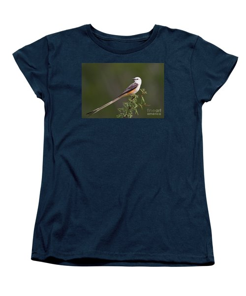 Male Scissor-tail Flycatcher Tyrannus Forficatus Wild Texas Women's T-Shirt (Standard Cut) by Dave Welling
