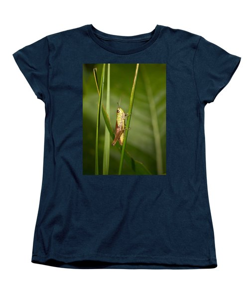Women's T-Shirt (Standard Cut) featuring the photograph Meadow Grasshopper by Jouko Lehto
