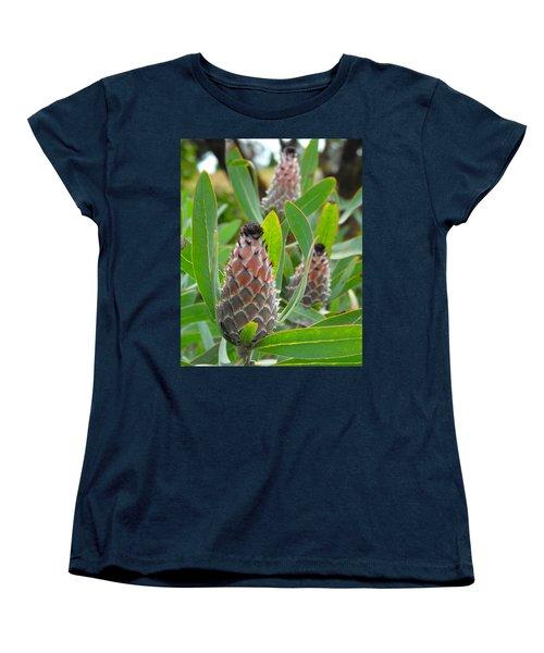 Mink Protea Flower Women's T-Shirt (Standard Cut)