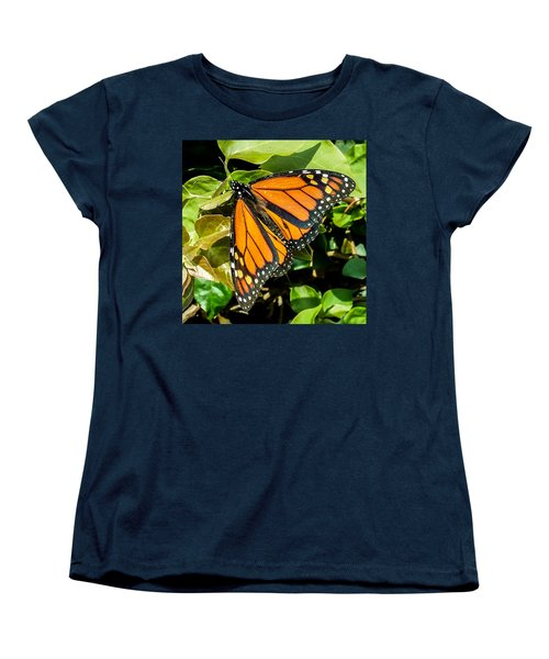 Monarch Women's T-Shirt (Standard Cut) by Mark Barclay