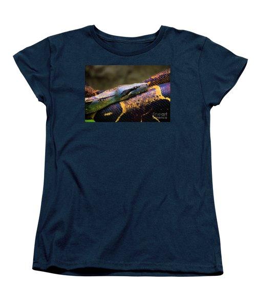 Don't Wear This Boa Women's T-Shirt (Standard Cut) by Al Bourassa