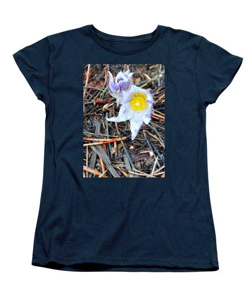 Mount Margaret Spring 14344 Women's T-Shirt (Standard Cut) by Jerry Sodorff