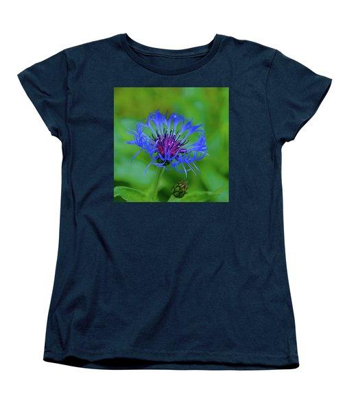 Mountain Cornflower Women's T-Shirt (Standard Cut) by Byron Varvarigos