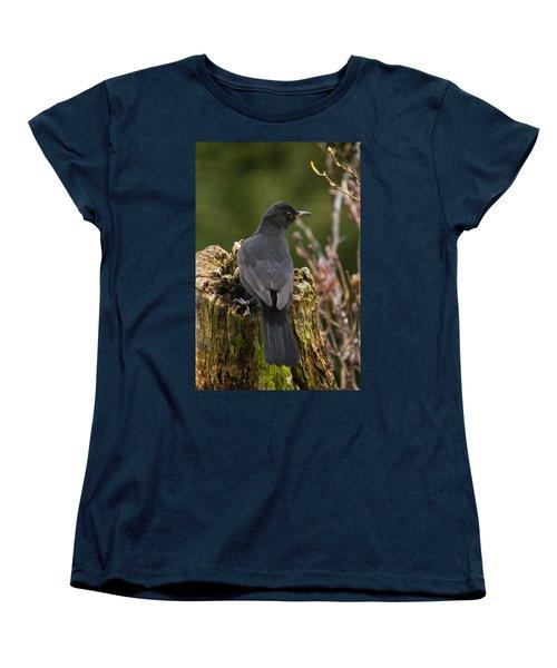 Mr Birdy Women's T-Shirt (Standard Cut)