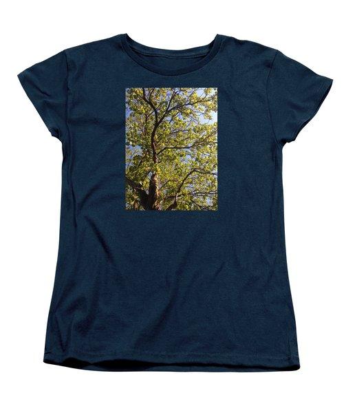 Multiplicity  Women's T-Shirt (Standard Cut)