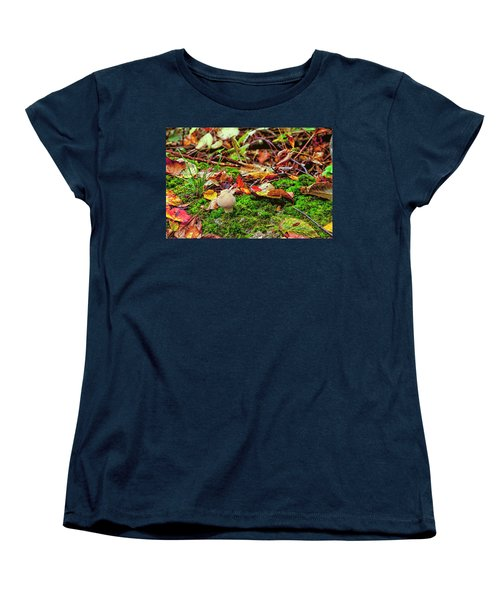 Mushroom Women's T-Shirt (Standard Cut) by David Cote
