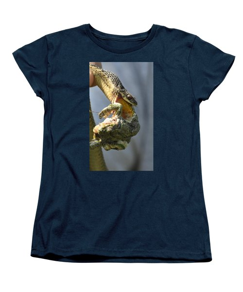 Nature Is Beguiling Women's T-Shirt (Standard Cut) by Lisa DiFruscio