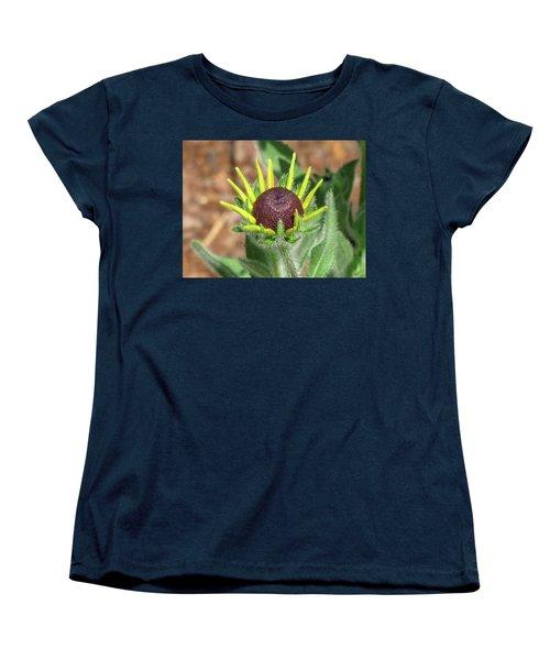 New Daisy Women's T-Shirt (Standard Cut) by Michele Wilson