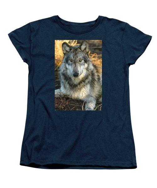 Noble Lupine Women's T-Shirt (Standard Cut) by Shari Jardina