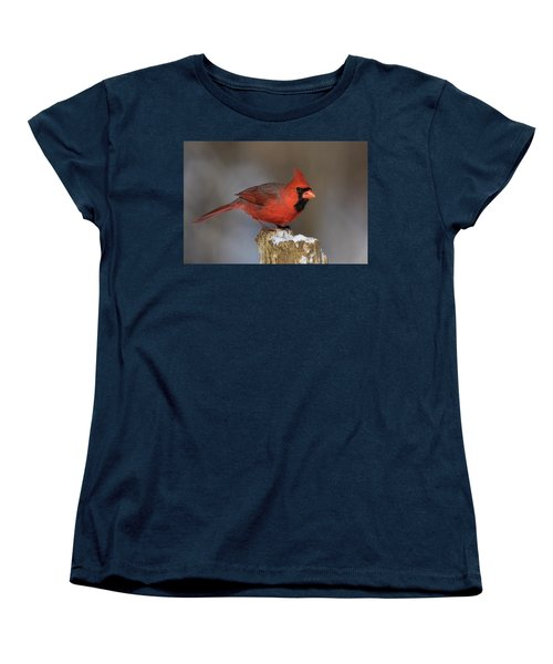 Women's T-Shirt (Standard Cut) featuring the photograph Northern Cardinal In Winter by Mircea Costina Photography