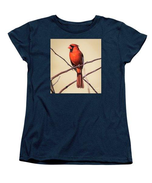 Northern Cardinal Profile Women's T-Shirt (Standard Cut) by Ricky L Jones