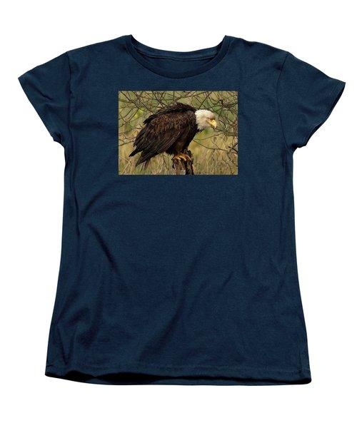 Old Eagle Women's T-Shirt (Standard Cut) by Sheldon Bilsker