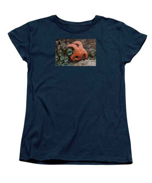 Orange Starfish And Anemonies Women's T-Shirt (Standard Cut) by Chuck Flewelling