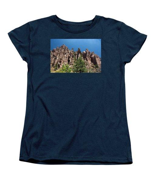 Women's T-Shirt (Standard Cut) featuring the photograph Organ Pipes by Joe Kozlowski