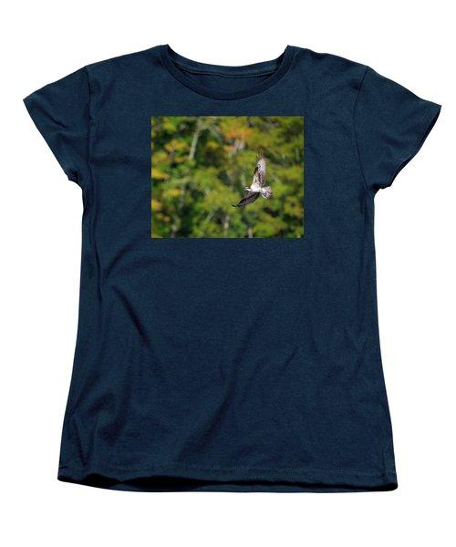 Osprey Women's T-Shirt (Standard Cut) by Bill Wakeley