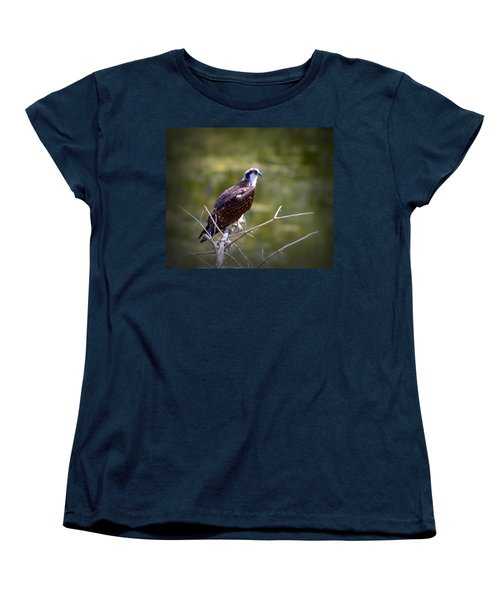 Osprey In Wait Women's T-Shirt (Standard Cut) by Josephine Buschman