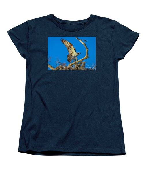 Osprey Landing On Branch Women's T-Shirt (Standard Cut) by Tom Claud