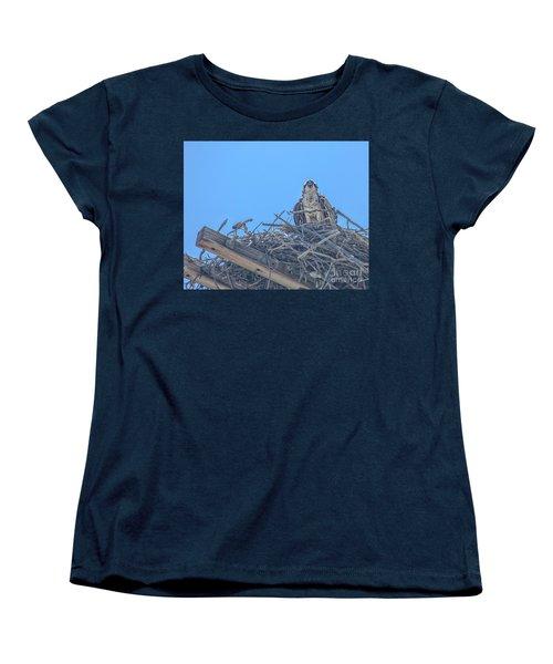 Osprey Nest Women's T-Shirt (Standard Cut) by Billie-Jo Miller
