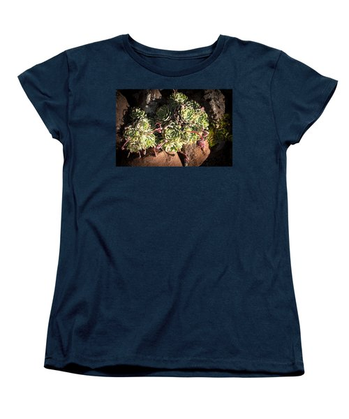 Women's T-Shirt (Standard Cut) featuring the photograph Out Door Succulents by Catherine Lau