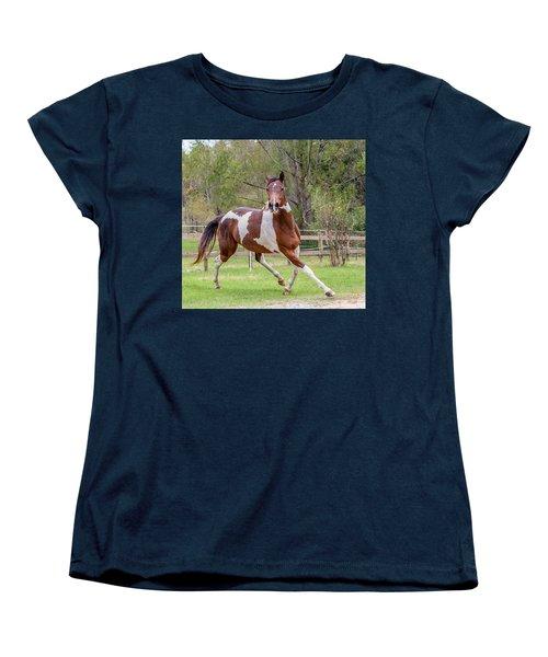 Paint Mare In Field Women's T-Shirt (Standard Cut) by Gwen Vann-Horn