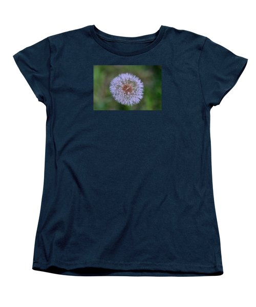 Parachute Club- Dandelion Gone To Seed Women's T-Shirt (Standard Cut) by David Porteus