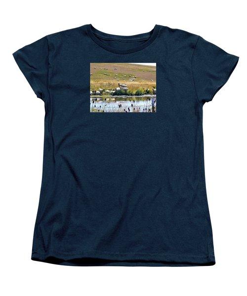 Women's T-Shirt (Standard Cut) featuring the photograph Pastoral Sheep By Pond by Deborah Moen