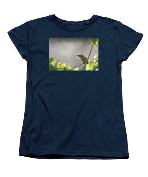 Perched Hummer Women's T-Shirt (Standard Cut) by Anne Rodkin