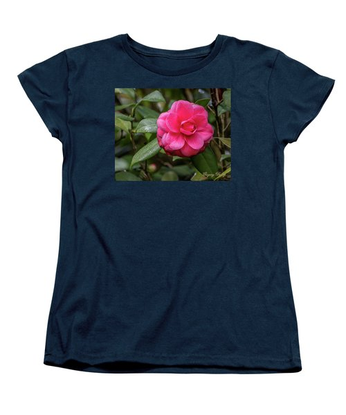 Women's T-Shirt (Standard Cut) featuring the photograph Pink Camelia 02 by Gregory Daley  PPSA