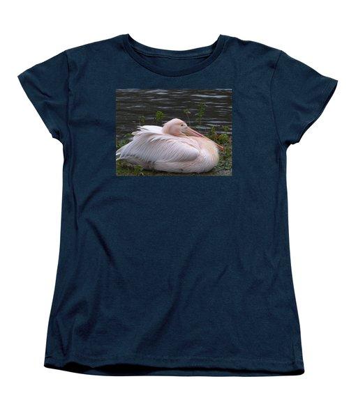 Pink Pelican Women's T-Shirt (Standard Cut) by Margaret Brooks