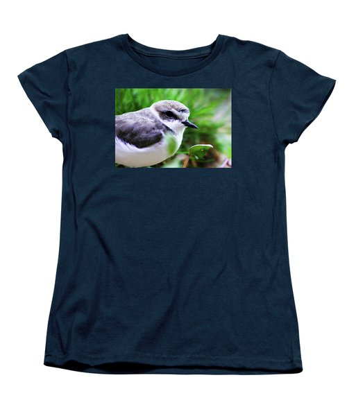 Women's T-Shirt (Standard Cut) featuring the photograph Piping Plover by Anthony Jones