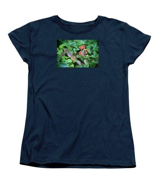 Poison Ivy In August Women's T-Shirt (Standard Cut)