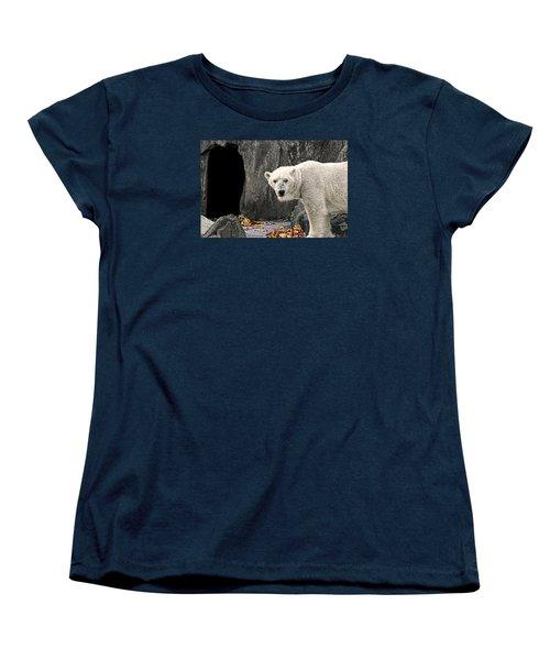 Polar Bear 101 Women's T-Shirt (Standard Cut) by Diana Angstadt