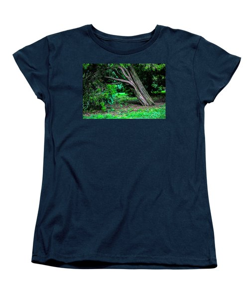Women's T-Shirt (Standard Cut) featuring the photograph Portrait Of A Tree by Madeline Ellis