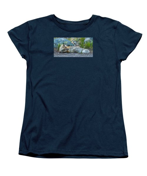 Women's T-Shirt (Standard Cut) featuring the photograph Pretty Boy Fox In Spring by Yeates Photography