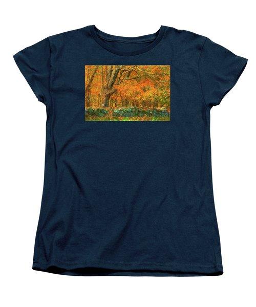 Preuss Road Stone Wall Women's T-Shirt (Standard Cut) by Trey Foerster