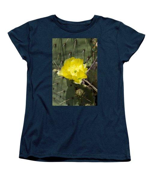 Prickly Pear Cactus Blossom - Opuntia Littoralis Women's T-Shirt (Standard Cut) by Kathy Clark
