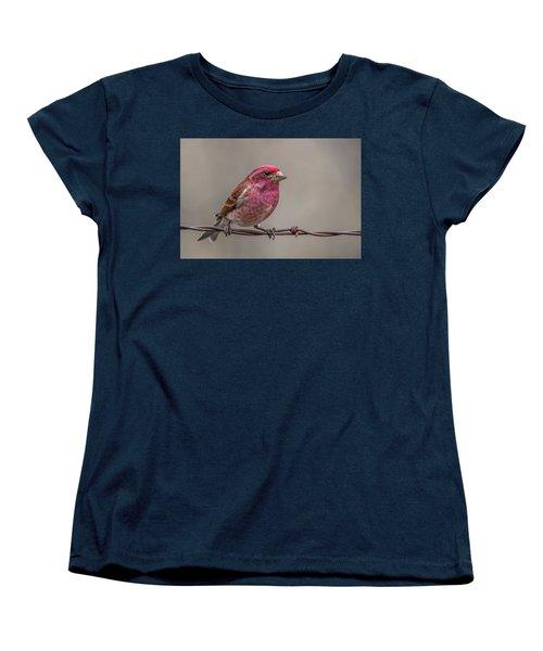 Women's T-Shirt (Standard Cut) featuring the photograph Purple Finch On Barbwire by Paul Freidlund