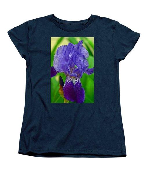Purple Iris Women's T-Shirt (Standard Cut) by Lisa Phillips