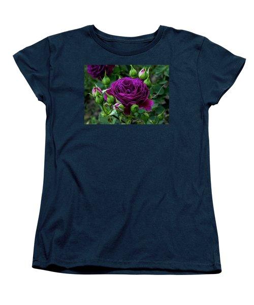 Purple Rose Women's T-Shirt (Standard Cut) by Alex Galkin