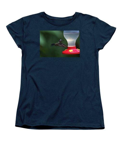 Purple-throated Mountain Gem Women's T-Shirt (Standard Cut) by James David Phenicie